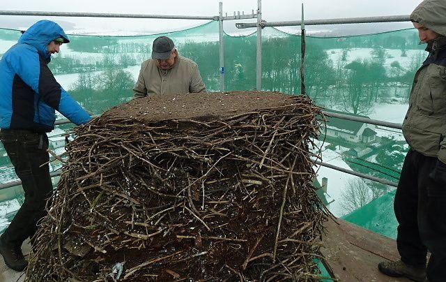 Obří čapí hnízdo na komíně v D. Lukavici